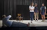 Jiří Menzel, Petra Horváthová, Daniel Rous a Pavel Nový, Mnoho povyku pro nic 2014, zdroj: © AGENTURA SCHOK, foto: Viktor Kronbauer