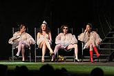 Kateřina Janečková (Princezna francouzská), Lada Bělašková (Rosalina), Tereza Dočkalová (Kateřina), Andrea Mohylová (Marie), Marná ...