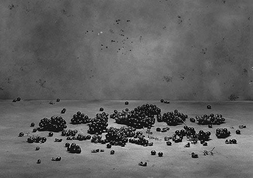 Maximální fotografie 2007, foto: Ivan Pinkava