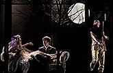 Eva Vrbková (Titanie), Pavel Neškudla (Novomanžel) a David Prachař (Oberon), Sen noci svatojánské 2013, zdroj: © AGENTURA SCHOK, foto: ...